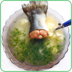Уха из головы рыбы: как сварить? Видео - Woman s Day