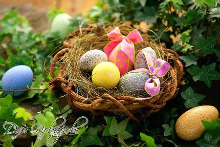 Крашеное пасхальное яйцо