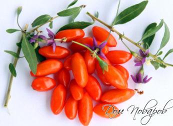 Как употреблять для похудения ягоды годжи