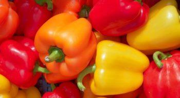 Как сохранить болгарский перец
