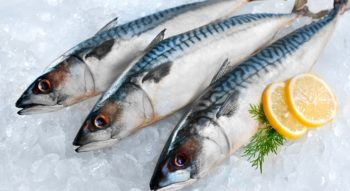 Сколько хранить рыбу в холодильнике
