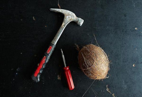 кокос, молоток и отвертка