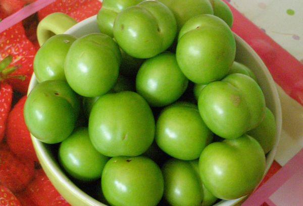 зеленая алыча