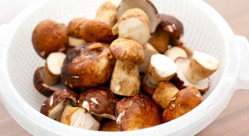 Сколько варить белые грибы