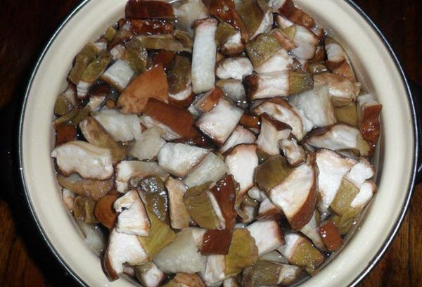 грибы в кастрюле