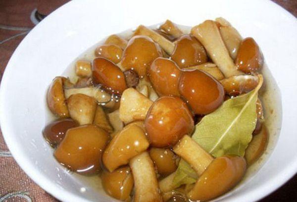 Готовим филе индейки на сковороде рецепты с фото