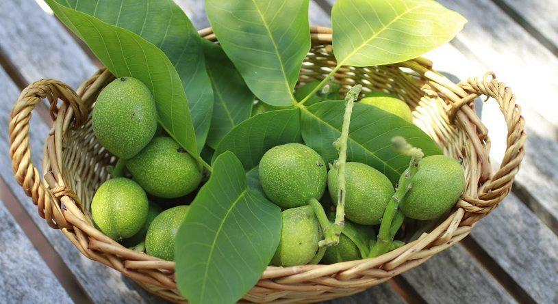 Как варить варенье из грецких зеленых орехов