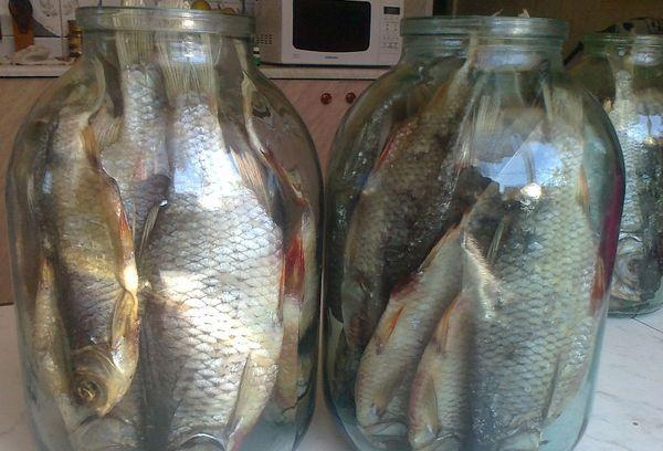 вяленая рыба в стеклянных банках