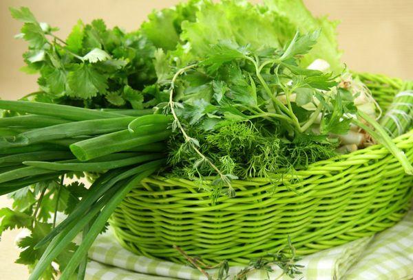 салат, зеленый лук и петрушка