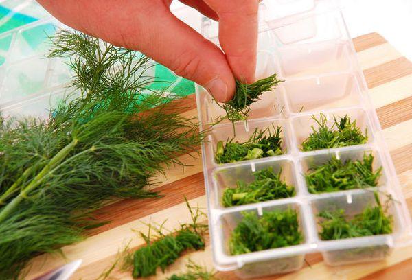 раскладывание зелени в пластиковую форму