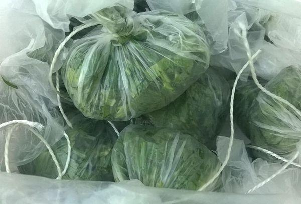 зелень в полиэтиленовых пакетах