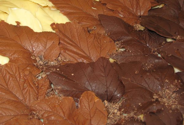 Шоколадные листья