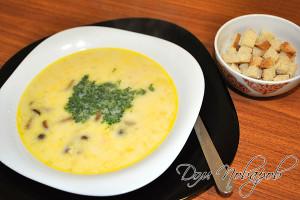 Суп из плавленного сыра