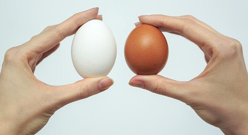 Яйцо до окраски