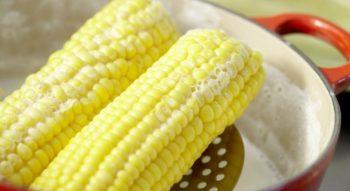 Как сварить кукурузу в молоке