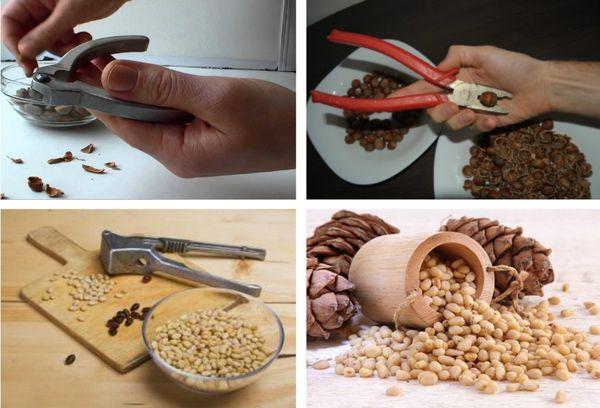 методы очистки орехов от скорлупы