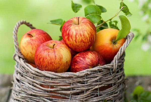 яблоки в карзине