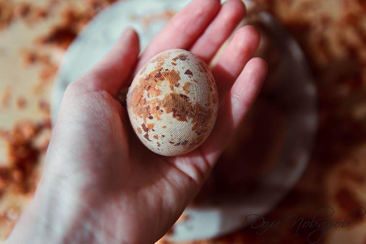 Оберните яйцо с шелухой в капроновый чулок
